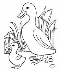 BlueBonkers Easter Ducks Coloring Page Sheets