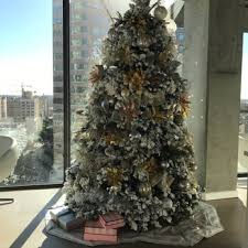 Photo Of Frostys Christmas Trees
