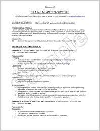 Resume For Retail Branch Banking Manager Sraddmerhsraddme Luxury Download Rhcheapjordanretrosus Sample