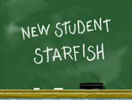 Spongebob That Sinking Feeling Full Episode by New Student Starfish Encyclopedia Spongebobia Fandom Powered