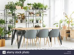 grauen stühlen an den hölzernen tisch in natürlichen