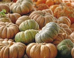 Tulsa Pumpkin Patch 2015 by Tulsa U0027s Best Fun And Family Friendly Halloween Events Weekend