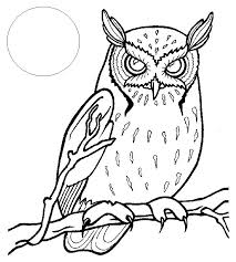 Coloring Books Pictures Of Owls To Color