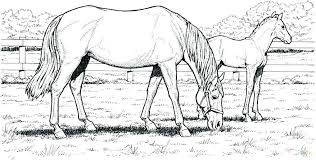 Horse Jumping Coloring Pages Animal