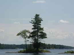 100 Mary Lake Ontario Small Island Stoney Kawarthas Stoney I Flickr