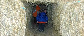 Pumpkin Patch Pittsburgh 2015 by Best Of The Burgh Pumpkin Patches In The Pittsburgh Area The