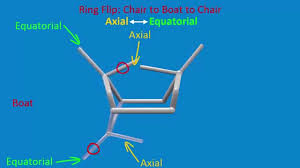 Chair Conformations Axial And Equatorial by Different Conformations Of Cyclohexane Youtube