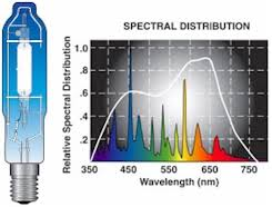 hilux gro 1000 watt metal halide conversion bulb