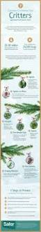 Best Type Of Christmas Tree by 7 Common Christmas Tree Bugs U0026 How To Get Rid Of Them Infographic