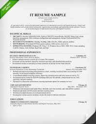 Information Technology IT Resume Sample