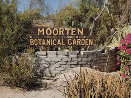 Botanical Garden New Darlings