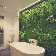 Plants In Bathroom Images by Bloompop Best Flowers U0026 Plants For The Bathroom The Havenly Blog