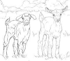 Pin Drawn Goat Printable 3
