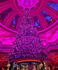 What Is The Best Christmas Tree Food by Pretty Pink Christmas Tree In Inspired By Charm Idolza