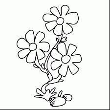 Excellent Small Flower Coloring Pages With Flowers And Butterflies
