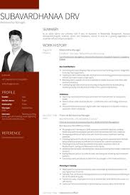 Cosy Sample Resume For Relationship Manager In Bank With Samples Visualcv Database