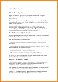 What To Write A Resume Objective Examples Business Writing