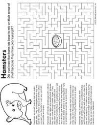 Pet Hamster Fact And Coloring Page
