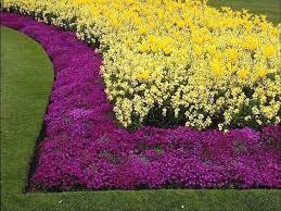 The 25 best Flower bed borders ideas on Pinterest