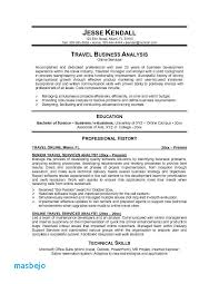 Travel Agent Resume Examples Virtual Sample