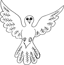 Dove Bird Outline Drawing