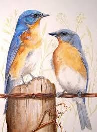 Watercolor Pencils Drawings