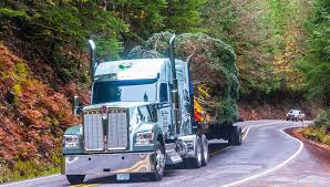 Central Oregon Truck Hauls Capitol Christmas Tree
