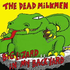 The Dead Milkmen | Music Fanart | Fanart.tv My Backyard Garden Nation Of Islam Ministry Agriculture Super Groovy Delicious Bite Big Lizard In My Back Yard Erosion Under Soil Backyard Ask An Expert I Think Found Magic Mushrooms Wot Do This Video Is Hella Clickbait Youtube Dinosaur Storyboard By 100142802 Holes In The Best Home Design Ideas Cottage Months Ive Been Creating More Garden Rooms Cat Frances Aggarwal Backyards Terrific Rocks And Minerals Tree Growing Started Fruiting Can Someone Id