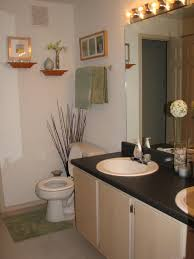 Enchanting Amazing Small Apartment Bathroom Decorating Ideas In