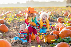 Alameda Pumpkin Patch 2015 by Pumpkin Patches In And Around Denver 2017 The Denver Ear