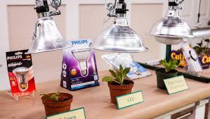 Plant Grow Lights Home & Family