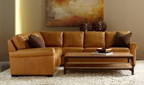Sears Home Sleeper Sofa by Curious Concept Leather Convertible Sofa Curious Sectional Sleeper