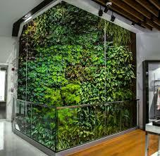 mur de separation exterieur les atouts d un mur végétal vertiss
