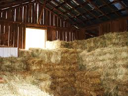 Barn With Hay 3 Barns Lessons Tes Teach Hay Barn Interior Stock Photo Getty Images Long Valley Heritage Restorations When Where The Great Wedding Free Hay Building Barn Shed Hut Scale Agriculture Hauling Lazy B Farm With Photos Alamy For A Night Jem And Spider Camp Out In That Belonged To Richardsons Benjamin Nutter Architects Llc Filesalt Run Road With Hoodjpg Wikimedia Commons Press Caseys Outdoor Solutions Florist Cookelynn Project Dry Levee Salvage