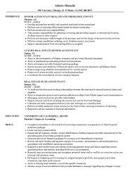 Download Accountant Real Estate Resume Sample As Image File