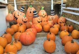 Half Moon Bay Pumpkin Patches 2015 by Where To Get A Pumpkin In San Francisco And The Bay Area Broke