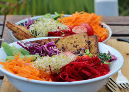 recettes de cuisine en recettes véganes no animals were intentionally harmed during