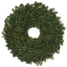 Fraser Christmas Tree Care by Tree Care Carolina Fraser Fir Company