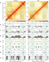 Numpy Tile Along New Axis by Hicplotter Integrates Genomic Data With Interaction Matrices