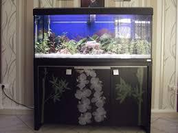 aquarium tout équipé pas cher aquarium aquatlantis aquadream tout
