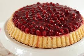 himbeer pudding kuchen grundrezept klassischer obstboden mit puddingcreme
