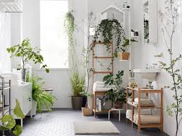 Best Plant For Bathroom by Style It Like You Stole It 30 Rooms That Are Basically Plant