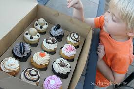 Scratch Cupcakes In Lancaster County PA