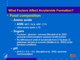 What Factors Affect Acrylamide Formation