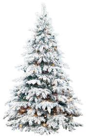 Flocked Silvertip Tree Traditional Christmas Trees by Barcana
