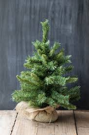 12 Ft Christmas Tree Canada by 256 Best Christmas Supplies Decor U0026 Crafts Images On Pinterest