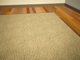 area rugs wooden floors surface vacuum cleaners best vacuum