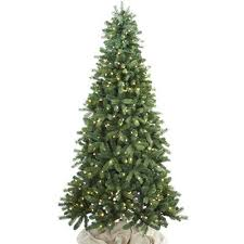 Balsam Christmas Tree Care by Types Of Real Christmas Trees The Home Depot