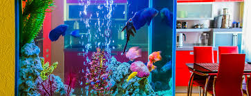 das perfekte aquarium wohnzimmer mit meerblick myhammer