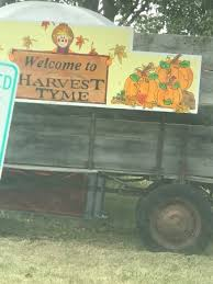 Pumpkin Farm In Palos Hills by Harvest Tyme Pumpkin Patch Lowell All You Need To Know Before